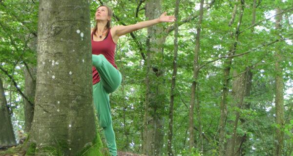 Wald-Yoga mit Kräuternachmittag: Sa, 14. Aug. / So, 22. Aug. 2021