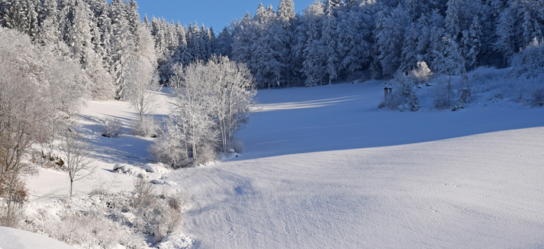 Winter im Naturpark_Foto Barbara Derntl