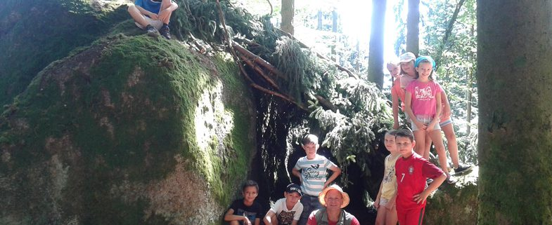 Naturpark-Camp 2017_unterstand fertog_Foto Jakadofsky