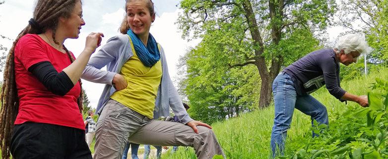 Wanderung mit der Kräuterexpertin_Foto_Reiter_Michaela